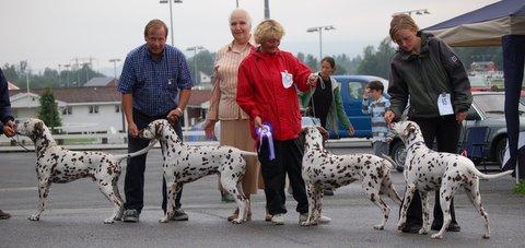 BIS breederclass Oslo spot show 2007